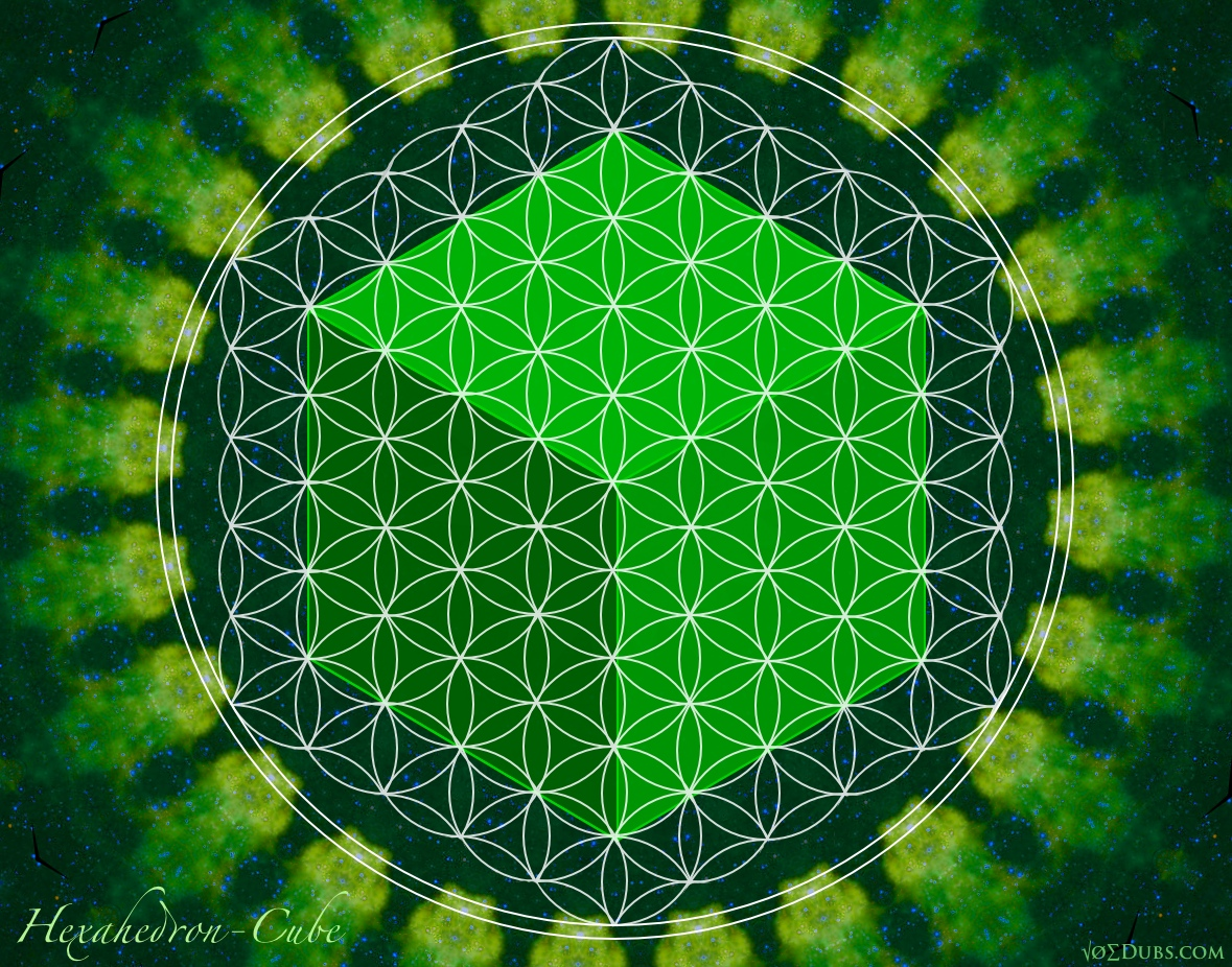 Cube Hexahedron Flower Of Life